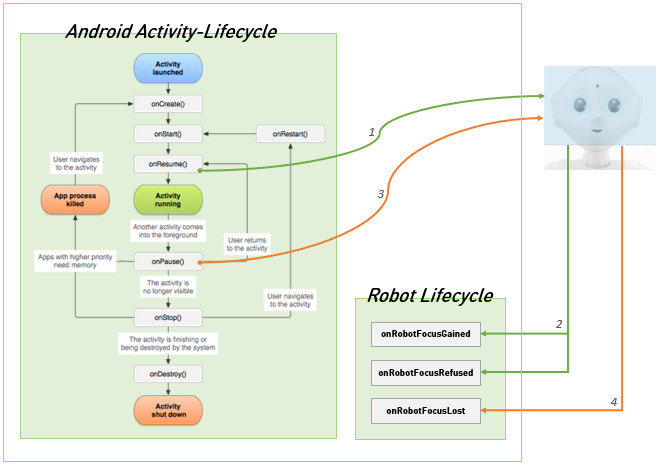 Android and Robot Lifecycle schema
